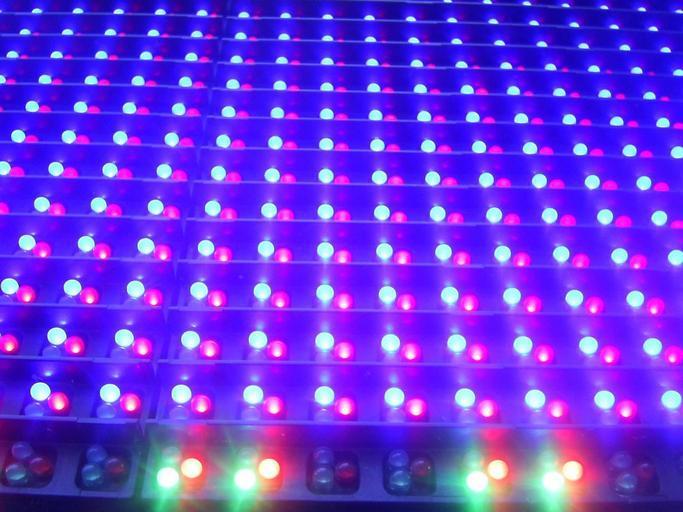 Modro-červené svietidlá, dekoračné osvetlenie, veľa svietidiel.jpg